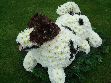3D Dog Tribute