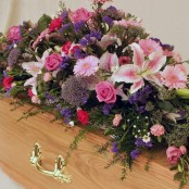 Pink and Blue Coffin Spray S003