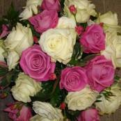 Compact Rose Posy