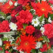 Red Funeral Posy S024