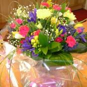 Spring flower Aqua